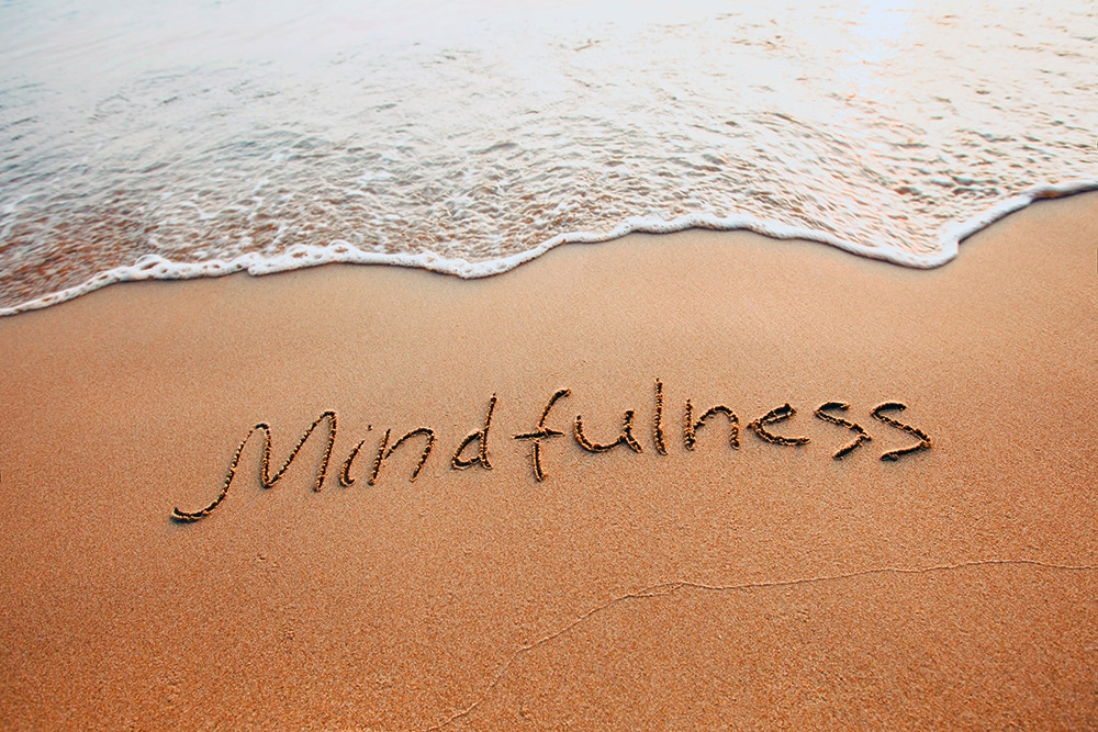 Reprogram Your Brain with Mindfulness